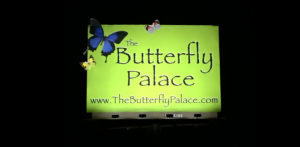 The Butterfly Palace Branson MO